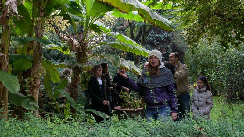Multiple events - A visit to the Botanical Garden