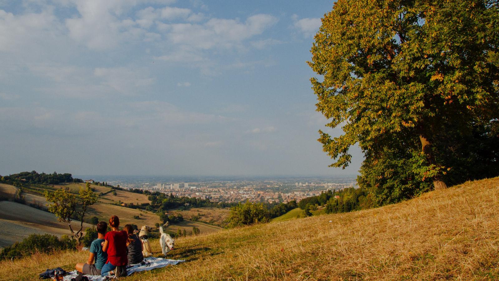 Monte Donato