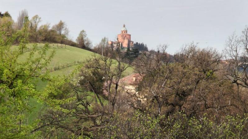 Ambiente e natura - Santuario di San Luca